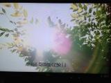 テレビ画像1