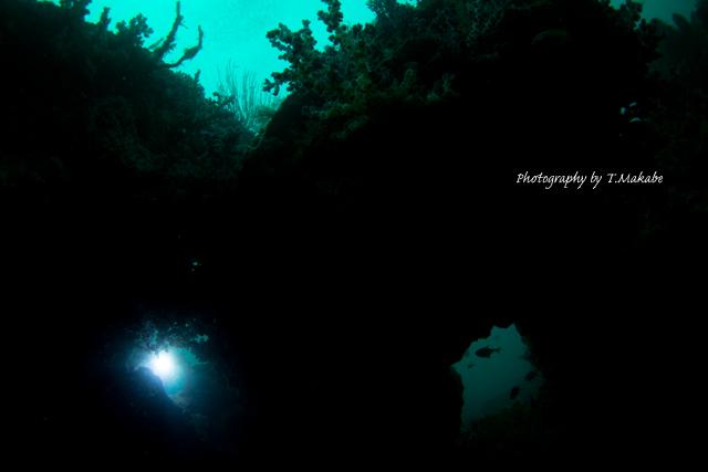 伊豆海洋公園の眼鏡岩