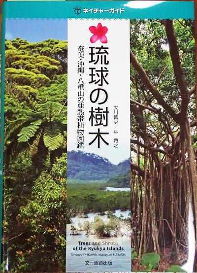 琉球の樹木