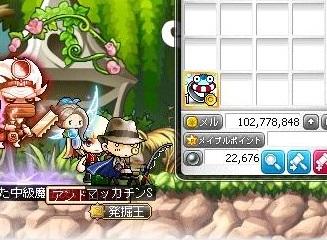 Maple15632a.jpg