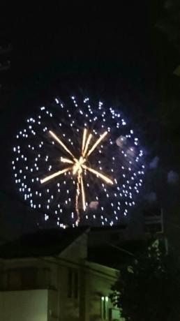 江戸川の花火大会 さすがです
