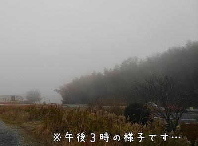 1222-2-2016.jpg