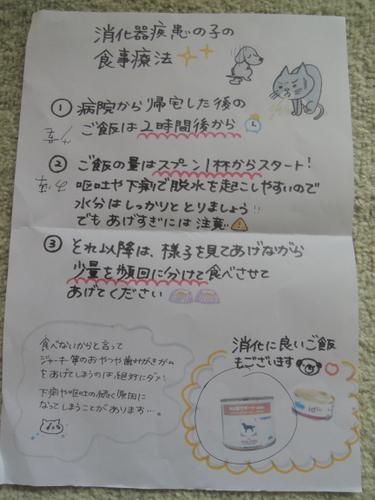 DSCN2781-001.jpg