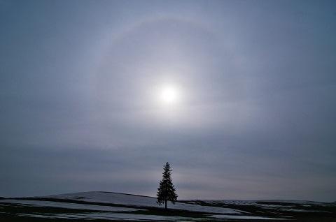161221 美瑛の日輪