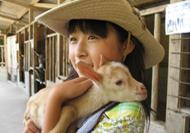 渋川動物公園web