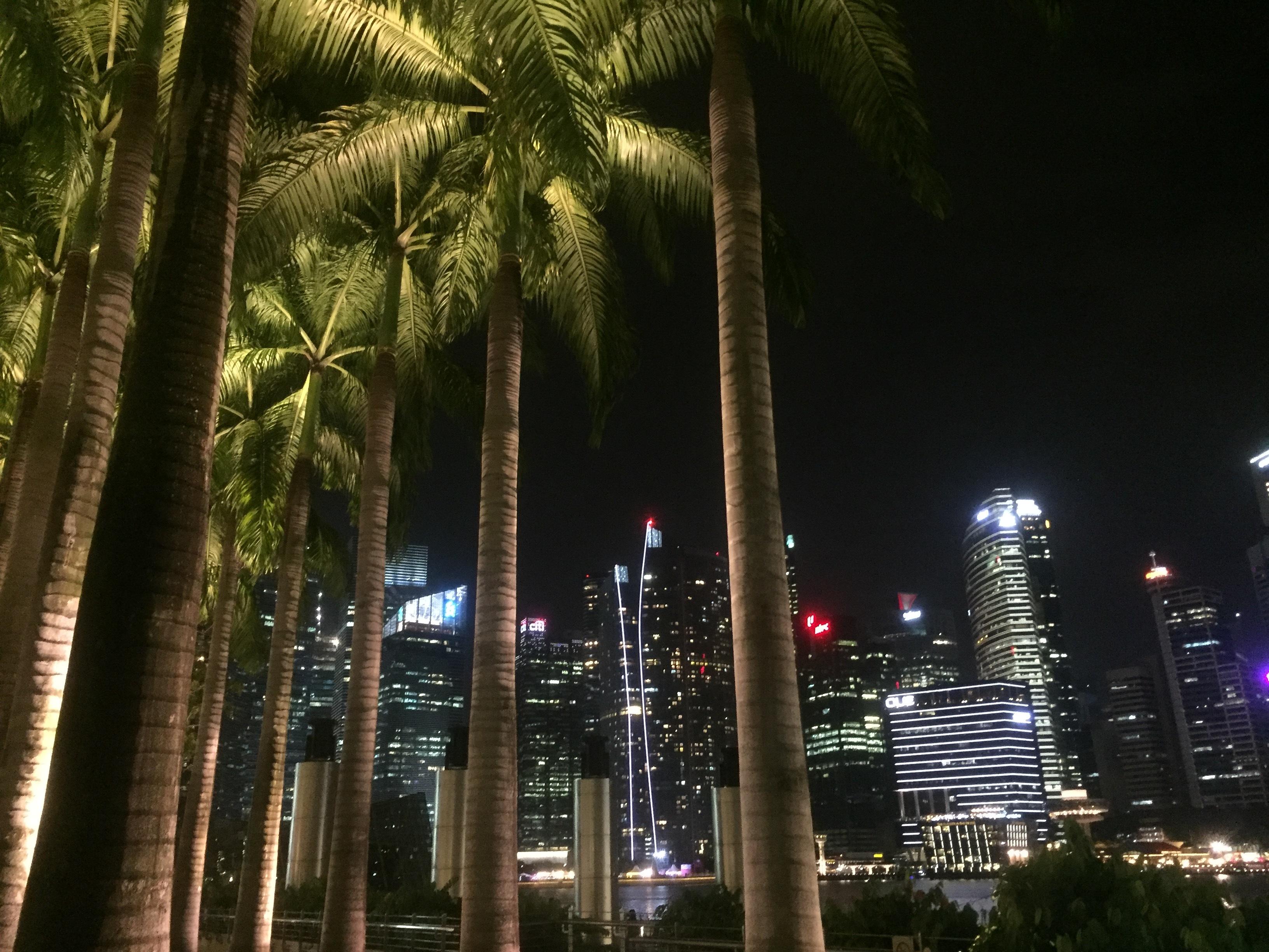 singapore(1).jpg
