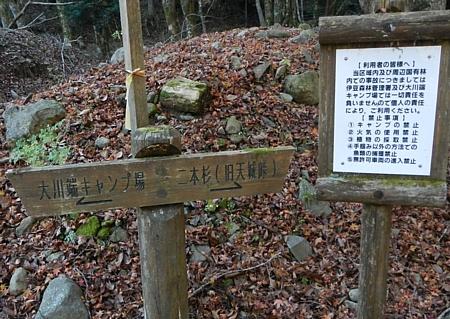 201612_Saruyama_04.jpg