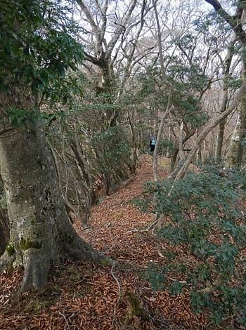 201612_Saruyama_23.jpg