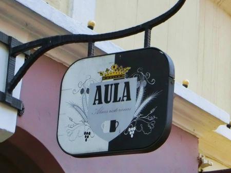 Aula(アウラ)ヴィリニュス1