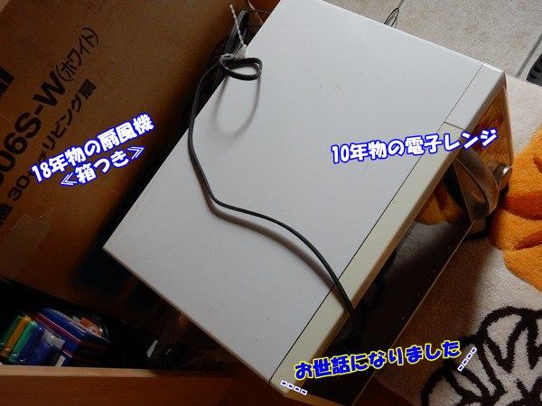 20160607-2.jpg