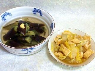 160419_3888茄子の煮浸し・白菜と薄あげの煮物VGA