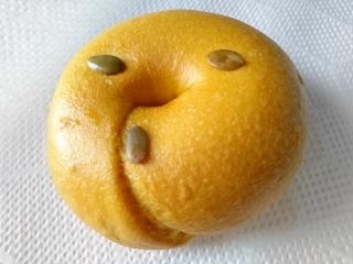 バニトイベーグル かぼちゃ