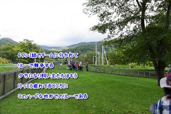 20160924-101.jpg