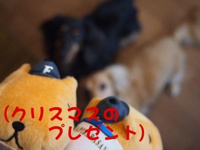 写真2310(№407)1