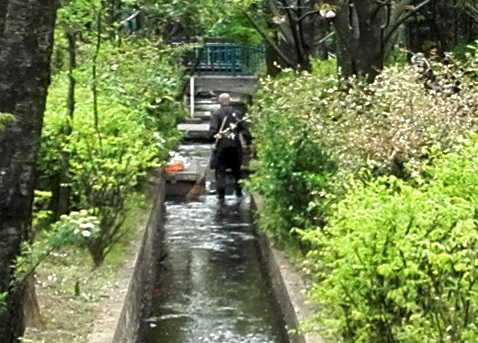 1 b 公園内の小川