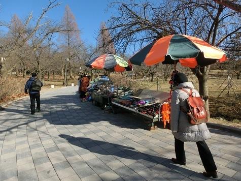 6 仏国寺への坂を登る