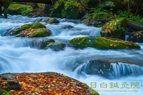 20161025奥入瀬渓流の紅葉2