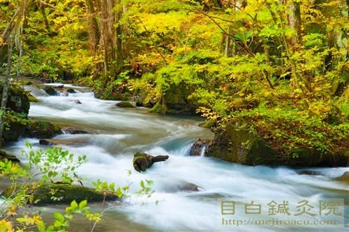 20161025奥入瀬渓流の紅葉1
