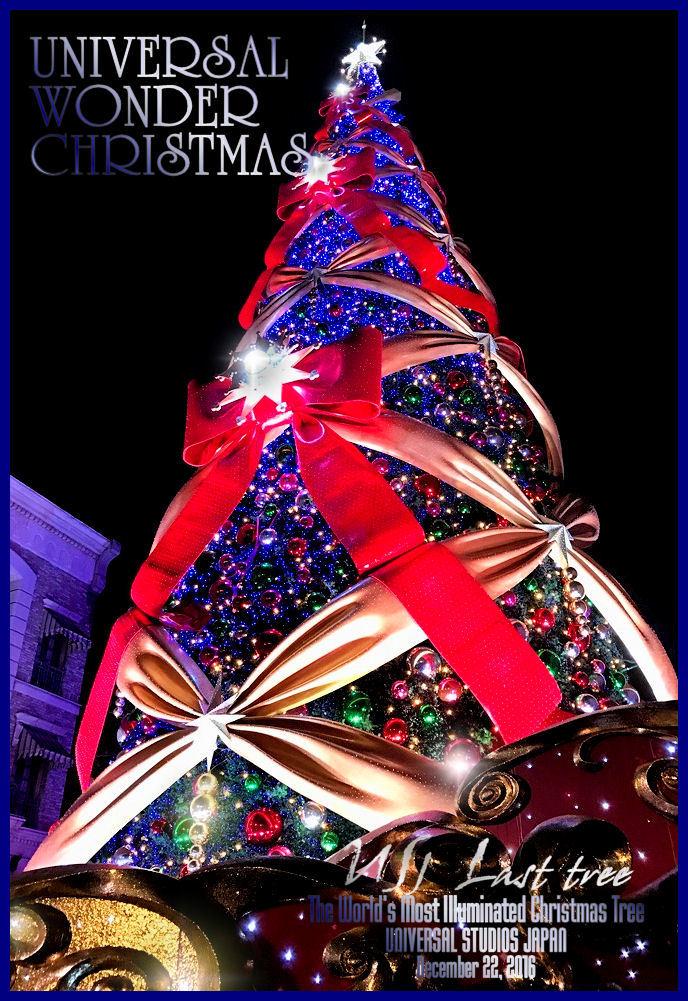 The World's Most Illuminated Christmas Tree