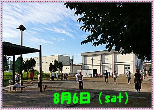 CIMG0608 8.6(sat)