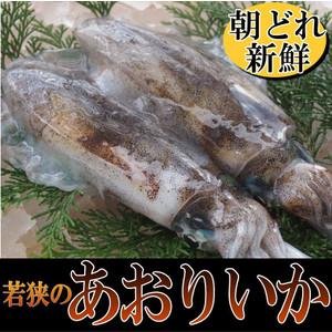 tobiuo_aoriika1kg.jpg