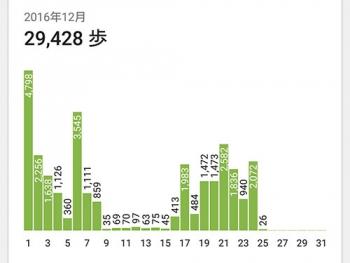 12月の歩数記録