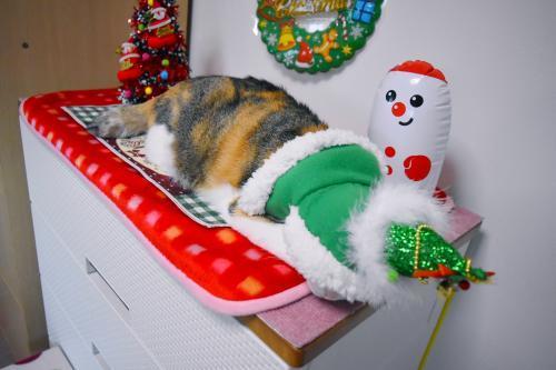 みくクリスマス寝る