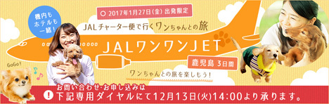 JALは、愛犬と一緒に搭乗できる「ワンワンJETツアー」を発表! イオンペットとの共同企画です。