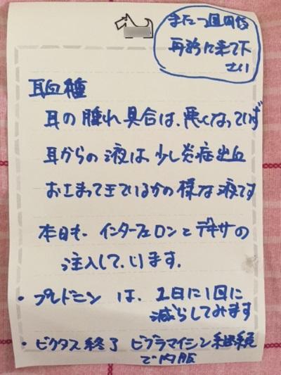 wa1_2016091009270318b.jpg