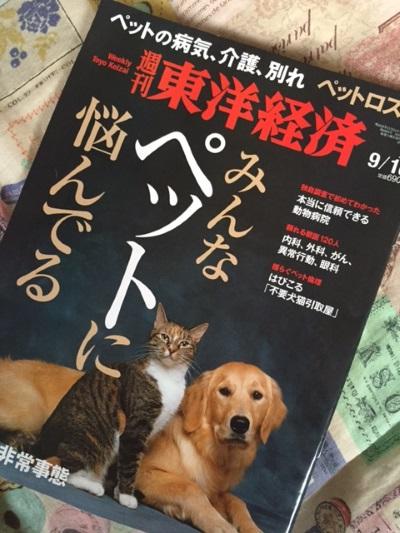 wan5_2016090808324307c.jpg