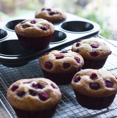 muffinbleuverry (1 - 1)-2