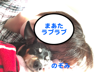 20160506-5.png