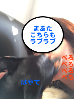 20160506-6.png