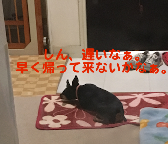 20160907-4.png