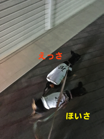 20160907-7.png