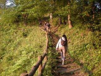 中山公園の坂を上って行く