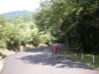 周辺の道も散策
