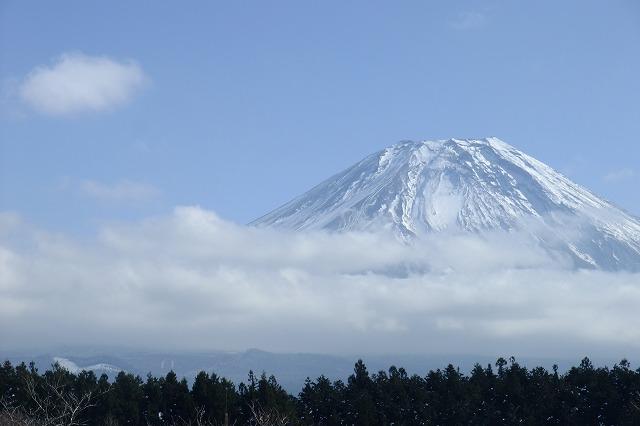 fuji161126054.jpg
