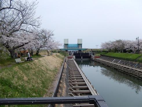 DSCN4675.jpg