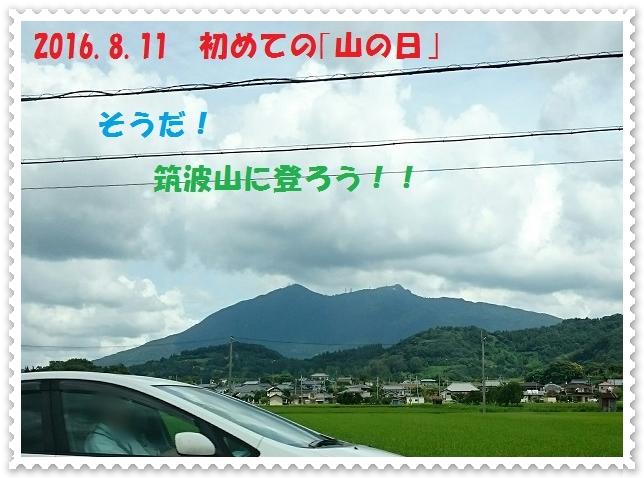_20150811_110920.jpg