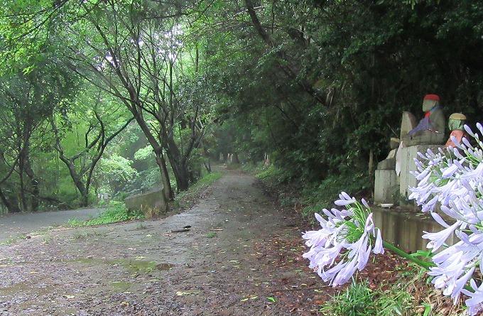 大師路お参りの道 雨降り 28.6.22