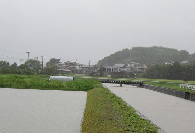 母の病院から帰り台風16号 28.9.20