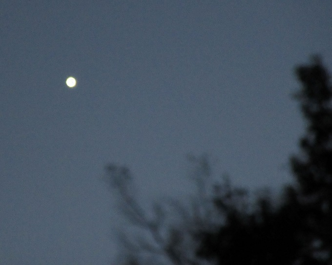お月様みたいな一番星 28.11.24