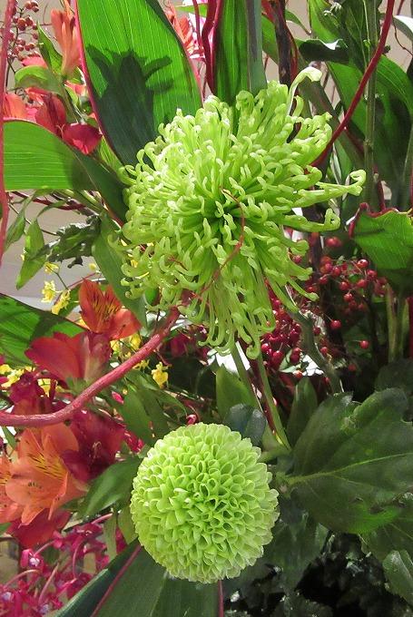 緑の花 28.11.27