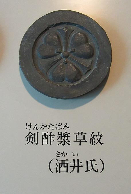 剣酸漿 酒井氏 28.12.1