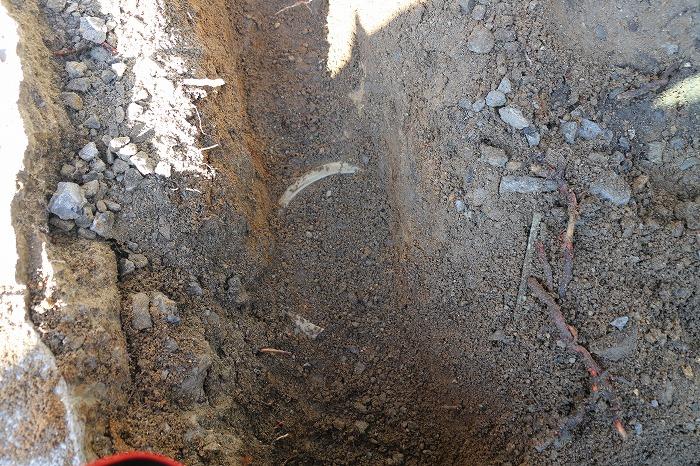 壺が埋まってる 28.12.19