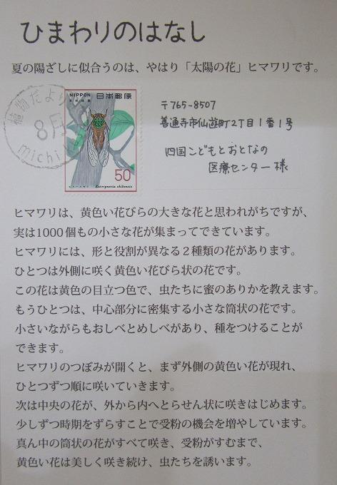 ひまわりからの手紙 善病 28.8.22