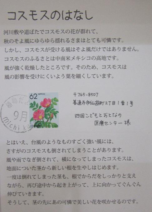コスモスからの手紙 28.9.8