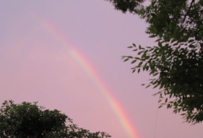 夕方の虹 7時半頃 28.6.25
