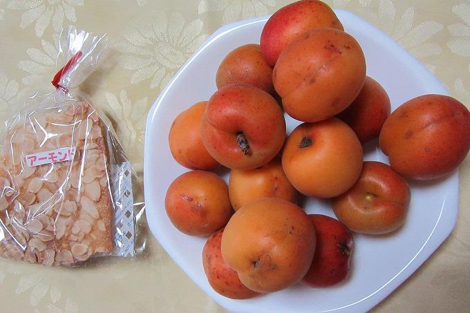 チュイルと杏 28.6.10